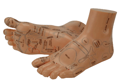 Rflexology mapped feet